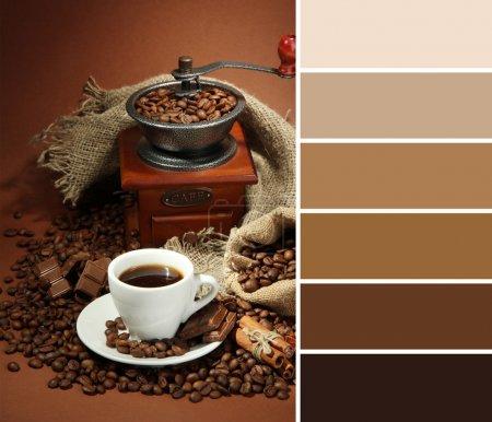 Tasse Kaffee, Mühle, Türkis und Kaffeebohnen auf braunem Hintergrund. Farbpalette mit kostenlosen Farbmustern