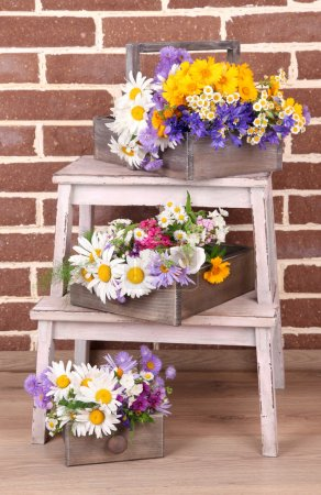 Beautiful flowers in crates on small ladder