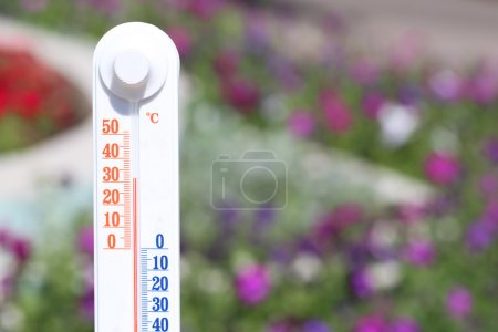 Thermometer on nature