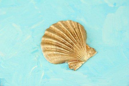 Colored golden seashell