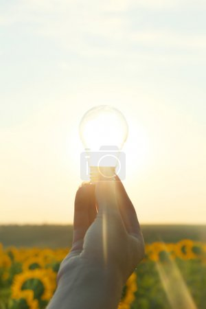 Foto de Bombilla con sol dentro en el campo. Medio ambiente, ecotecnología y energía solar . - Imagen libre de derechos