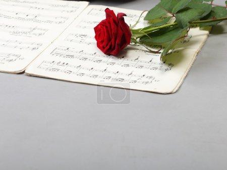 Photo pour Notes de rouge rose et ancienne note aiment la musique de fond - image libre de droit