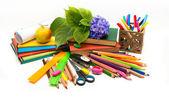 Teacher Day .School subjects and hydrangea flower.