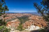 Panorama národního parku bryce canyon