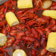 Crawfish from a Louisiana Cookout...