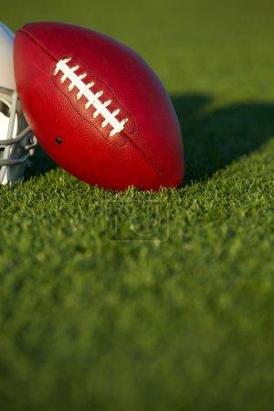 Pro Football on the Field