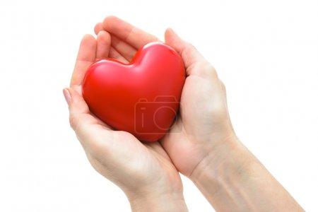Photo pour Coeur rouge dans les mains isolé sur fond blanc - image libre de droit