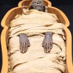 Egyptian mummy on an open casket...