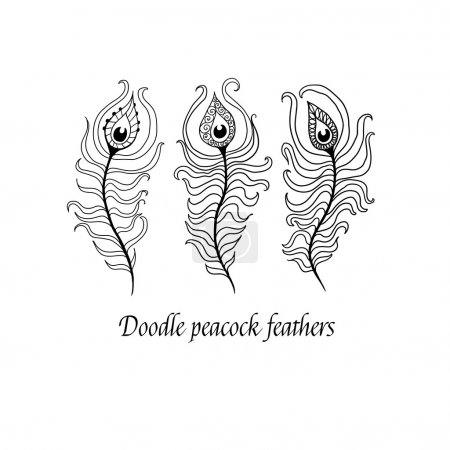 Illustration for Doodle peacock feathers. - Royalty Free Image