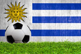 Soccer ball on grass with Uruguay flag background