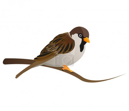 Illustration for Cute sparrow sitting on tree branch - Royalty Free Image