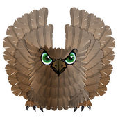 Nocturnal birds of prey Owl Vector illustration