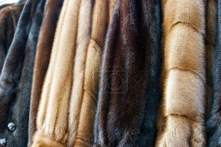 Photo pour Manteaux de fourrure fait pour les dames et exposés à la vente. - image libre de droit