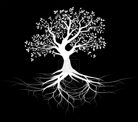 Illustration for Old tree with roots silhouette, white shape over black background - Royalty Free Image