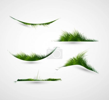 Illustration for Abstract shiny green grass collection vector frame illustration - Royalty Free Image