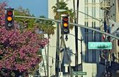 Rodeo Drive Traffic Lights