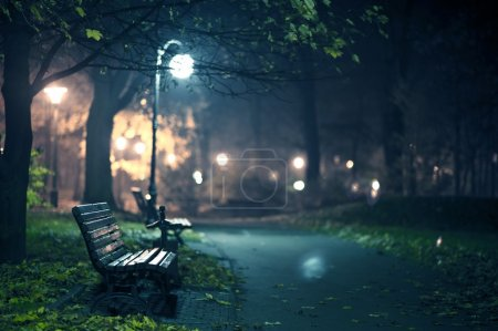 Photo for A Night in the Park. Late Autumn Night in the Park. Wood Benches and Park Alley. Horizontal Photography. Central Europe - Royalty Free Image