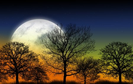 Photo for Mystic Garden Illustration. Large Full Moon and Shapes of Trees. Nature Illustration - Royalty Free Image