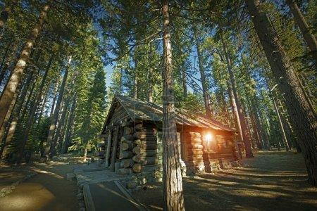 Photo pour Cabane en bois rond vieillie quelque part dans la Sierra Nevada Mountains, États-Unis . - image libre de droit