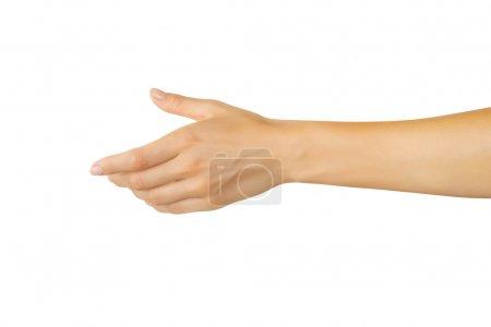 Photo pour Femme vide main isolée sur fond blanc - image libre de droit