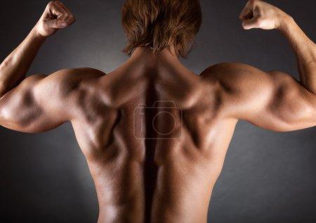 Muscular male back