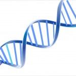 DNA vector...