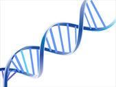 DNA vector
