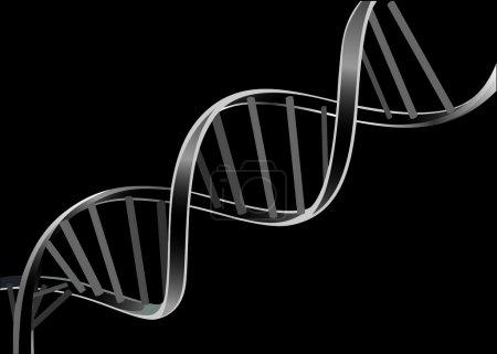 Illustration pour Brin d'ADN isolé sur fond noir - image libre de droit