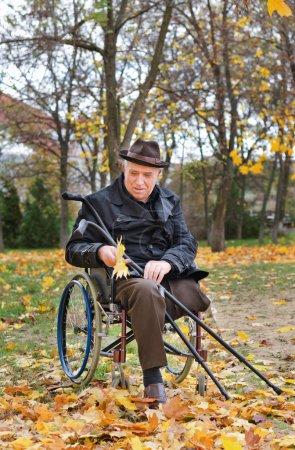 Photo pour Senior handicapé homme en fauteuil roulant coiffé d'un chapeau élégant et pardessus assis tenant ses béquilles et en regardant une poignée d'automne jaune coloré ne laisse comme il jouit d'une journée dans le parc - image libre de droit