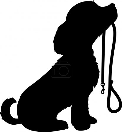 Dog and Leash