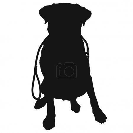 Labrador Retriever Leash Silhouette