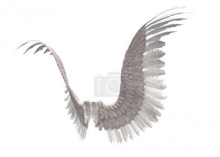 Photo pour Image numériquement rendue des ailes d'ange à plumes blanches . - image libre de droit