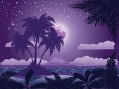 Tropický ostrov v noci