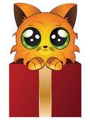 červené kotě v krabici