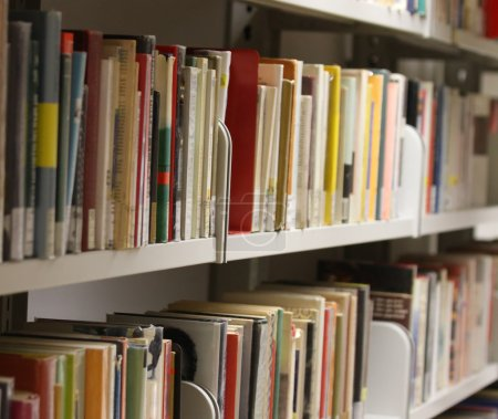 many books and essays in a municipal library available to educat