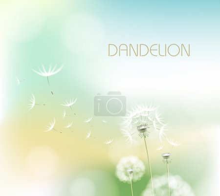 Illustration for Abstract background with flower dandelion - Royalty Free Image
