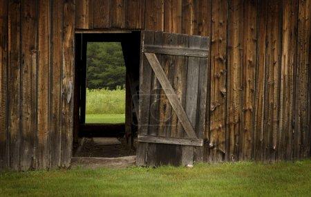 Barn door open on green landscape