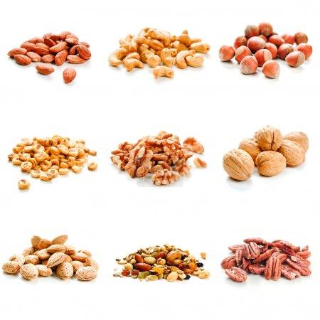 Photo pour Neuf variétés de noix sur un fond blanc - image libre de droit