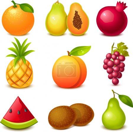 Illustration for Fruit set - Royalty Free Image