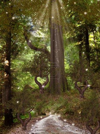 Photo pour Forêt enchantée avec libellule arbres et chemin d'accès - image libre de droit