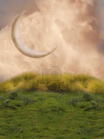 Photo pour Paysage de fantaisie avec grande lune et herbe - image libre de droit