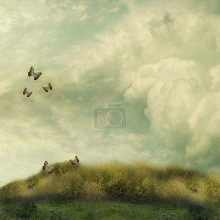 Photo pour Paysage de fantaisie dans le domaine avec papillon - image libre de droit