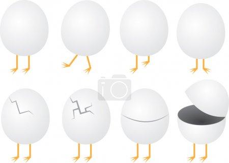 Eggs with Feet
