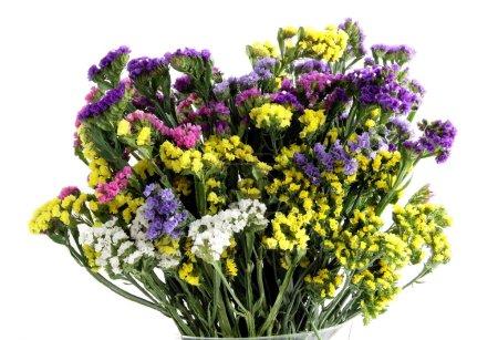 Photo pour Fleurs statrice multicolores pour posy séché - image libre de droit