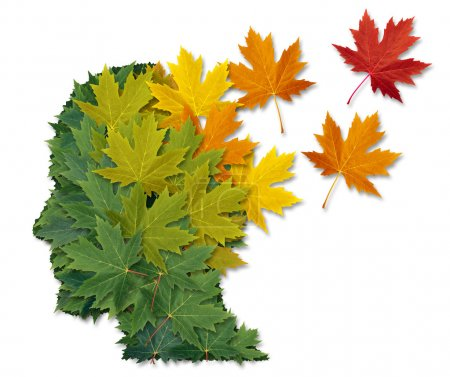 Photo pour Mental illness and Alzheimer's disease as a health care and medical symbol with a human head made of green leaves turning to falling autumn foliage lost in to the wi - image libre de droit
