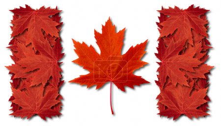 Photo pour Drapeau de feuille du Canada fait avec des feuilles d'érable rouge tridimensionnelles comme symbole d'automne comme concept de thème saisonnier de fierté canadienne comme icône du temps d'automne sur un whi - image libre de droit