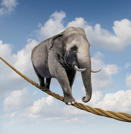 Photo for Managing risk and big business challenges and uncertainty with a large elephant walking on a dangerous rope high in the sky as a symbol of balance and overcoming fear for goal success. - Royalty Free Image