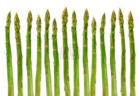Photo for Asparagus group of green healthy vegetables organized in a row isolated on a white background as a food concept of health diet and living a natural fit well nourished life. - Royalty Free Image