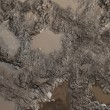 Mud texture or wet brown soil with natural organic...