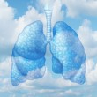 Clean air quality concept and healthy breathing in...